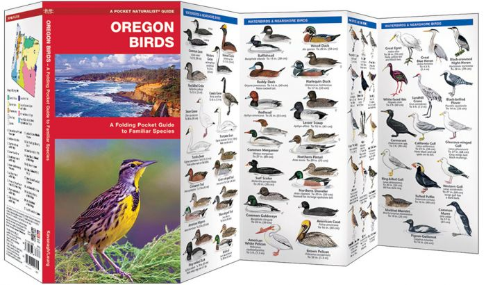 Oregon Birds (Pocket Naturalist® Guide).