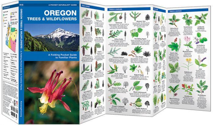 Oregon Trees & Wildflowers (Pocket Naturalist® Guide)