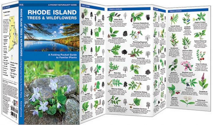 Rhode Island Trees & Wildflowers (Pocket Naturalist® Guide)