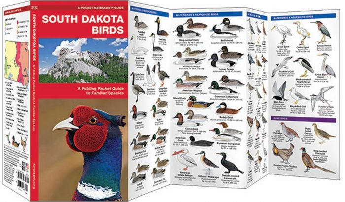 South Dakota Birds (Pocket Naturalist® Guide)