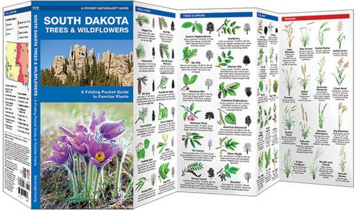 South Dakota Trees & Wildflowers (Pocket Naturalist® Guide)