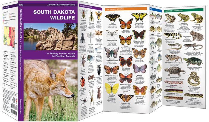 South Dakota Wildlife (Pocket Naturalist® Guide).