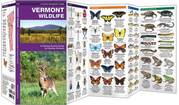 Vermont Wildlife (Pocket Naturalist® Guide)