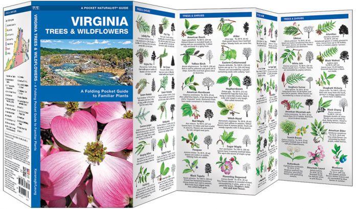 Virginia Trees & Wildflowers (Pocket Naturalist® Guide).