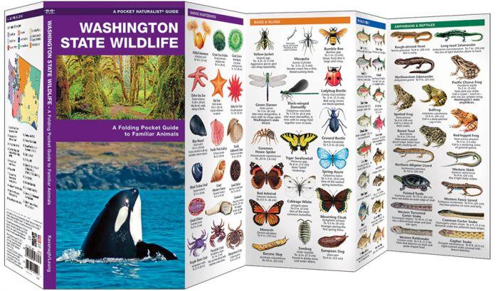 Washington State Wildlife (Pocket Naturalist® Guide).