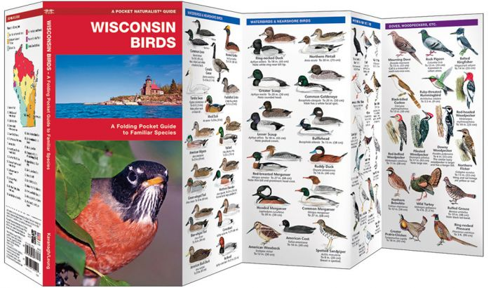 Wisconsin Birds (Pocket Naturalist® Guide).