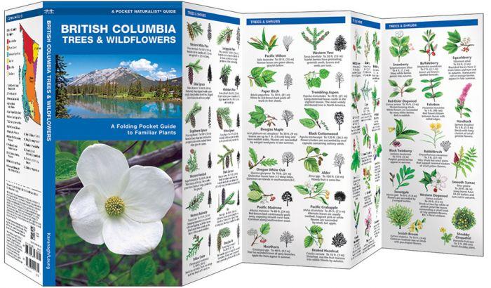British Columbia Trees & Wildflowers