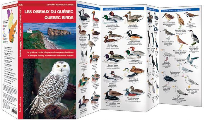 Quebec Birds /Les Oiseaux Du Quebec (Pocket Naturalist® Guide).