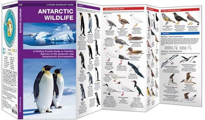 Antarctic Wildlife (Pocket Naturalist® Guide).