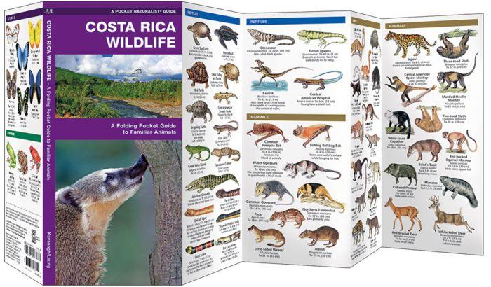 Costa Rica Wildlife (Pocket Naturalist® Guide).