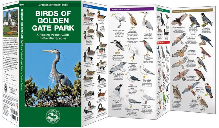 Birds Of Golden Gate Park (Pocket Naturalist® Guide).