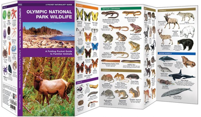 Olympic National Park Wildlife (Pocket Naturalist® Guide).