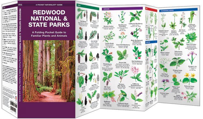 Redwood National & State Parks (Pocket Naturalist® Guide).