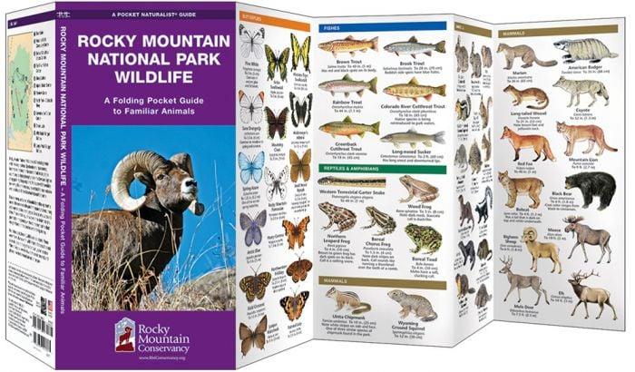 Rocky Mountain National Park Wildlife (Pocket Naturalist® Guide).
