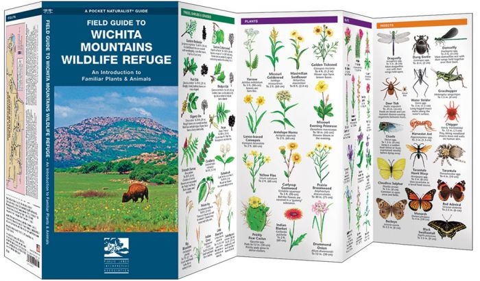Field Guide To Wichita Mountains Wildlife Refuge (Pocket Naturalist® Guide).