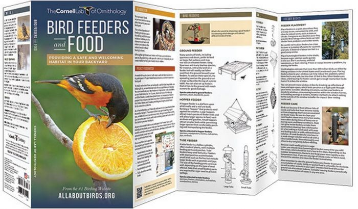 Bird Feeders & Food (All About Birds Pocket Guide®)