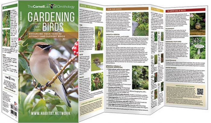 Gardening for Birds (All About Birds Pocket Guide®)