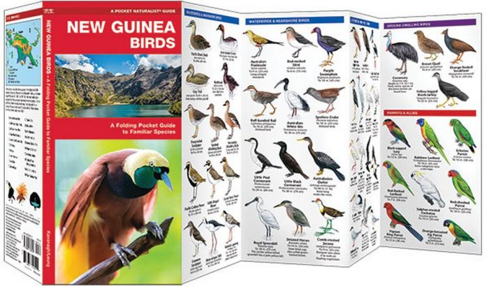 New Guinea Birds (Pocket Naturalist® Guide)