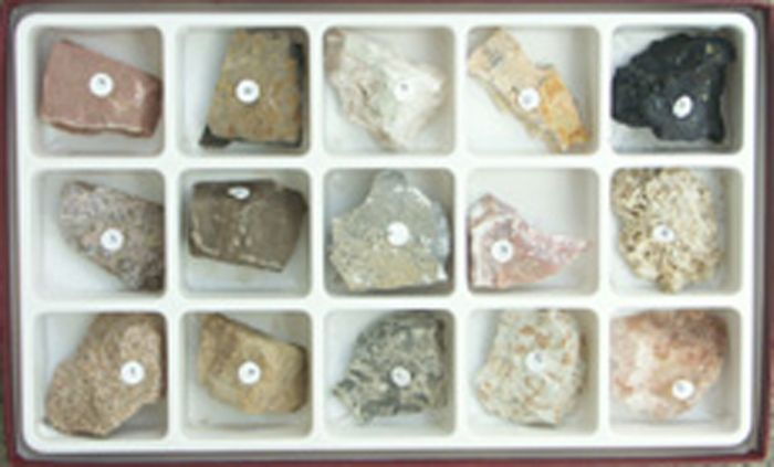 Rock Collections Sorted By Formation - Sedimentary Collection
