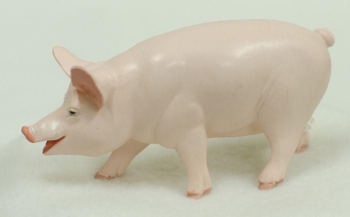 Pig (Barnyard Animal Model)