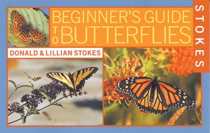 Butterflies (Stokes Beginner'S Guide)