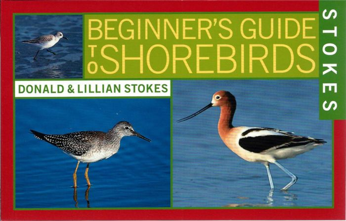 Shorebirds (Stokes Beginner'S Guide)