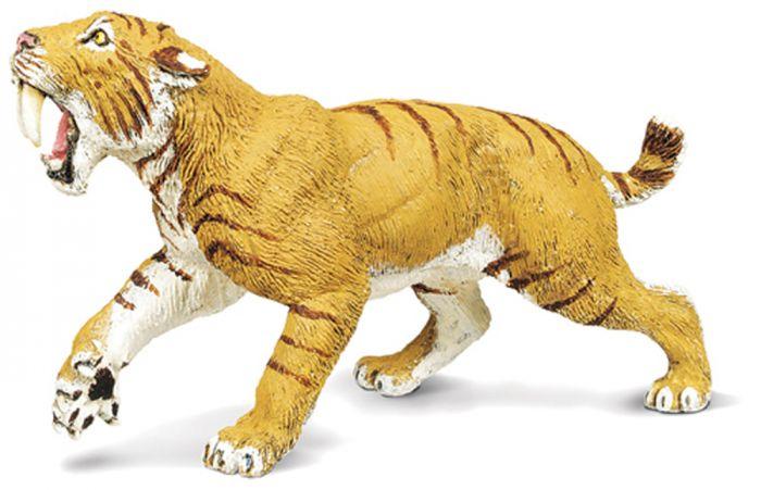 Smilodon Model
