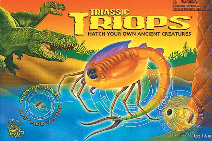 Triops Observation Kit