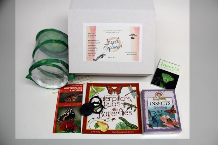 Budding Naturalists® Insect Explorer Adventure Kit (Ages 8 - 12)