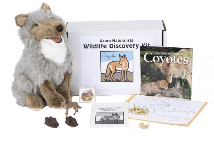 Wildlife Discovery® Kit: Coyote