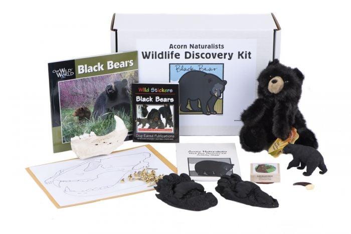Wildlife Discovery® Kit: Black Bear