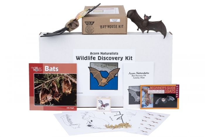 Wildlife Discovery® Kit: Bat