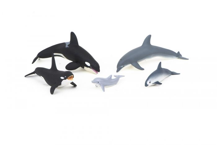 Dolphin Family Model Collection (Discounted Set of 5 Models)