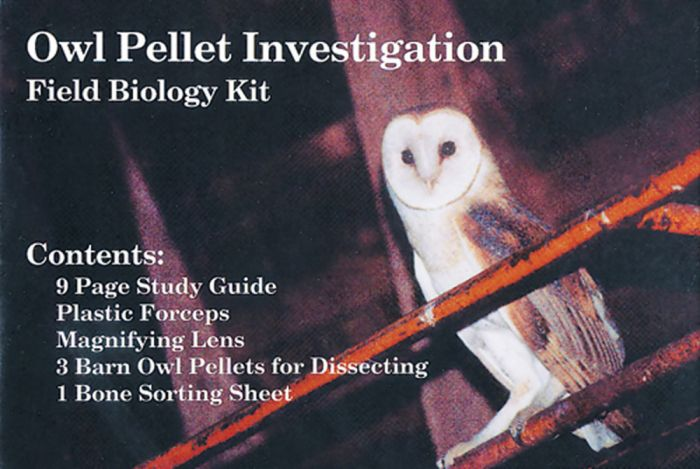 Barn Owl Pellet Kit - Individual Student