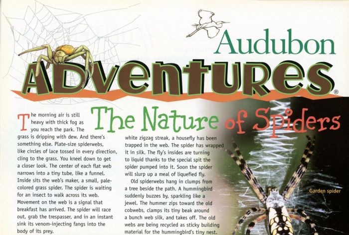 Audubon Adventures Kit #8:  Cool Critters