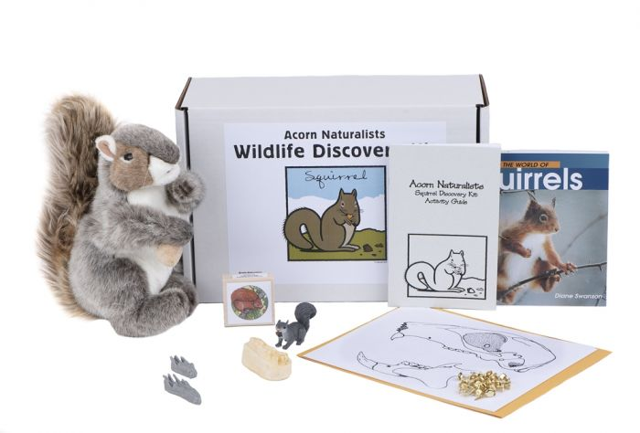 Wildlife Discovery® Kit: Squirrel