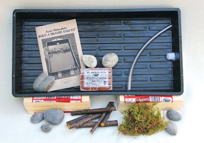 Build A Beaver Dam® Model Kit.