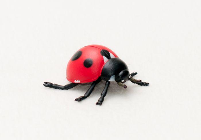 Ladybug Model