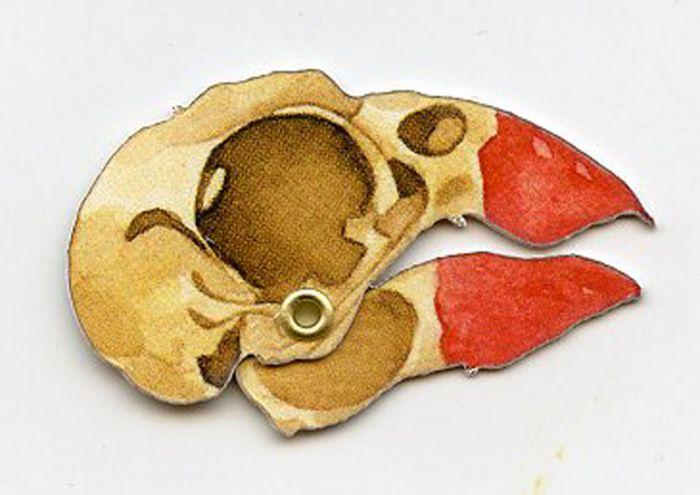 Cardinal Skull Model®.