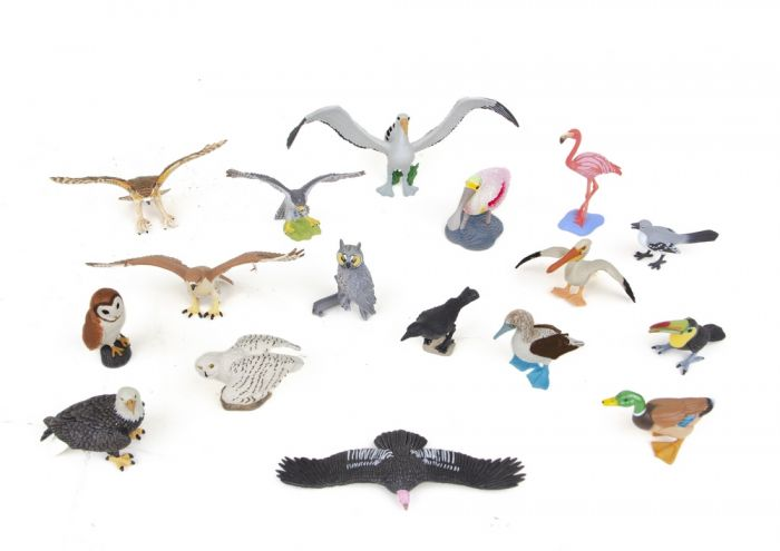 Bird Model Collection (Discounted Set of 17 Models)