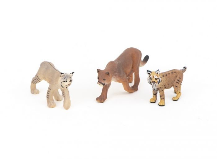 Felines (Cat Family) Model Collection (Discounted Set of 3 Models)
