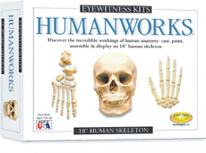 Humanworks Casting Kit