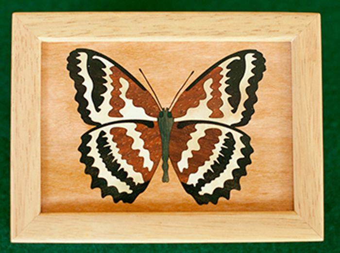 Butterfly Wood Box (4 X 5)