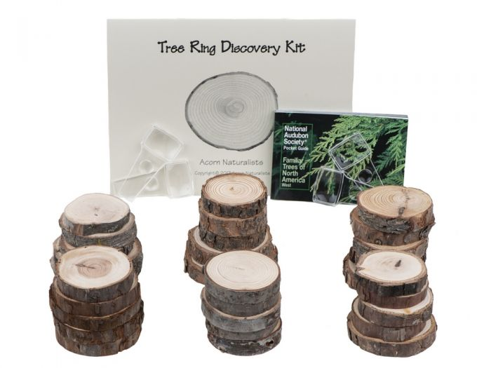 Western Tree Ring Discovery Kit