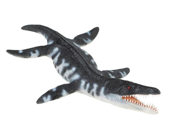 Liopleurodon Model