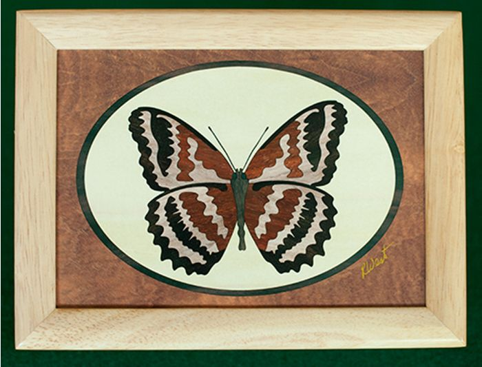 Butterfly Wood Box (6 X 8)
