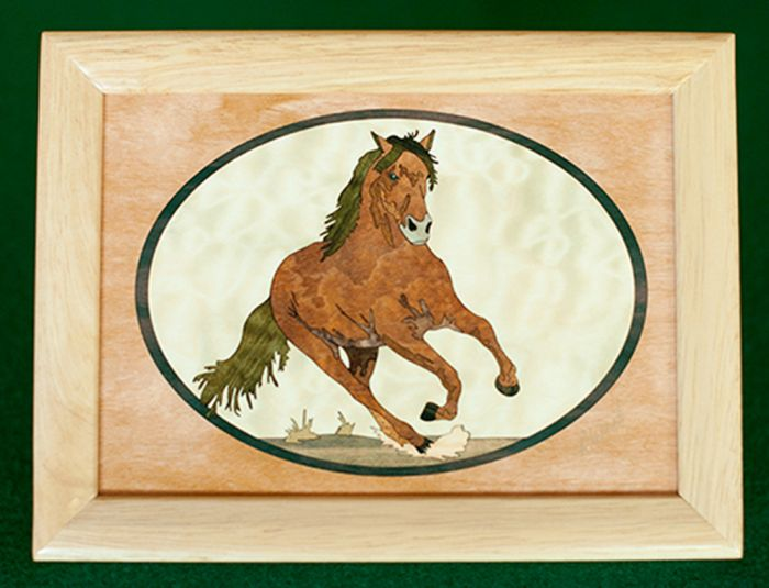Stallion Wood Box (6 X 8)