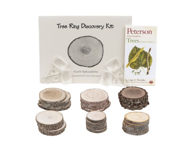 Eastern Tree Ring Discovery Kit