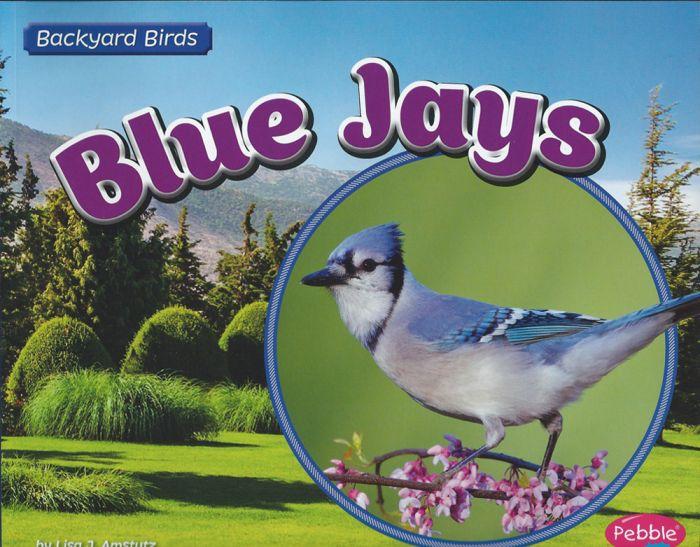 Blue Jays (Backyard Bird Series)