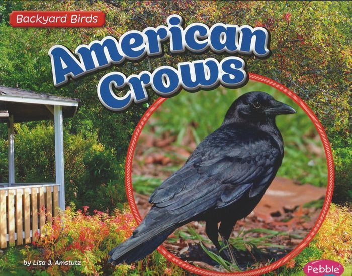 American Crows (Backyard Bird Series)